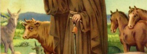 Domenica 17 gennaio. Il santo del giorno. Avvenne oggi: debutta Braccio di Ferro, inizia Casa Vianello, viene inaugurato lo stadio Olimpico