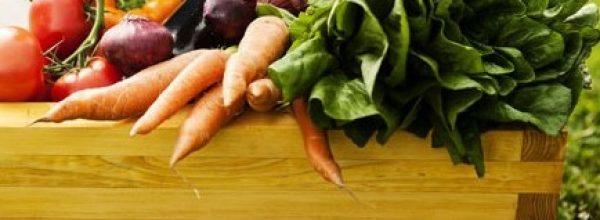 Oggi sabato  16 ottobre ricorre la Giornata mondiale dell'alimentazione.  La ricorrenza è stata istituita nel 1979( clicca qui per continuare a leggere)